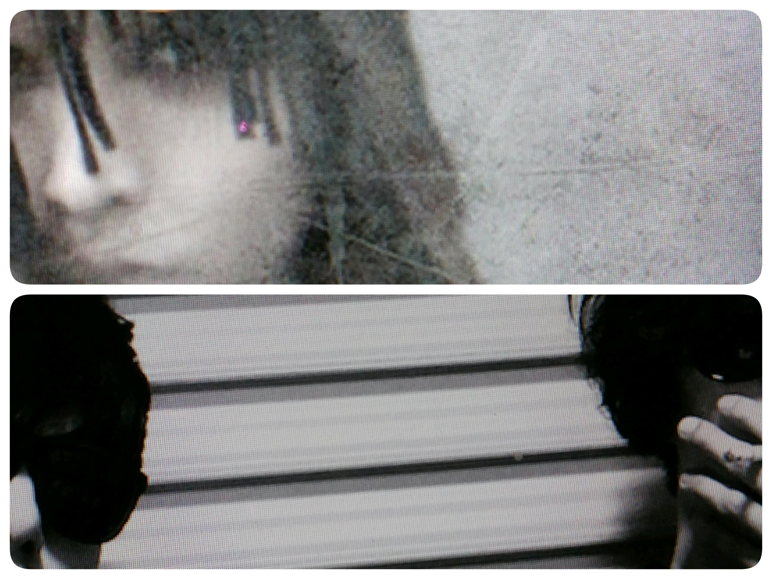 Xiziと101Aの写真